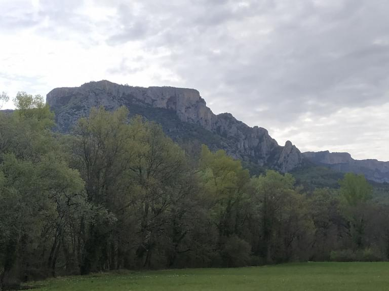 Campagne Peyrengue, Moustiers, Avril