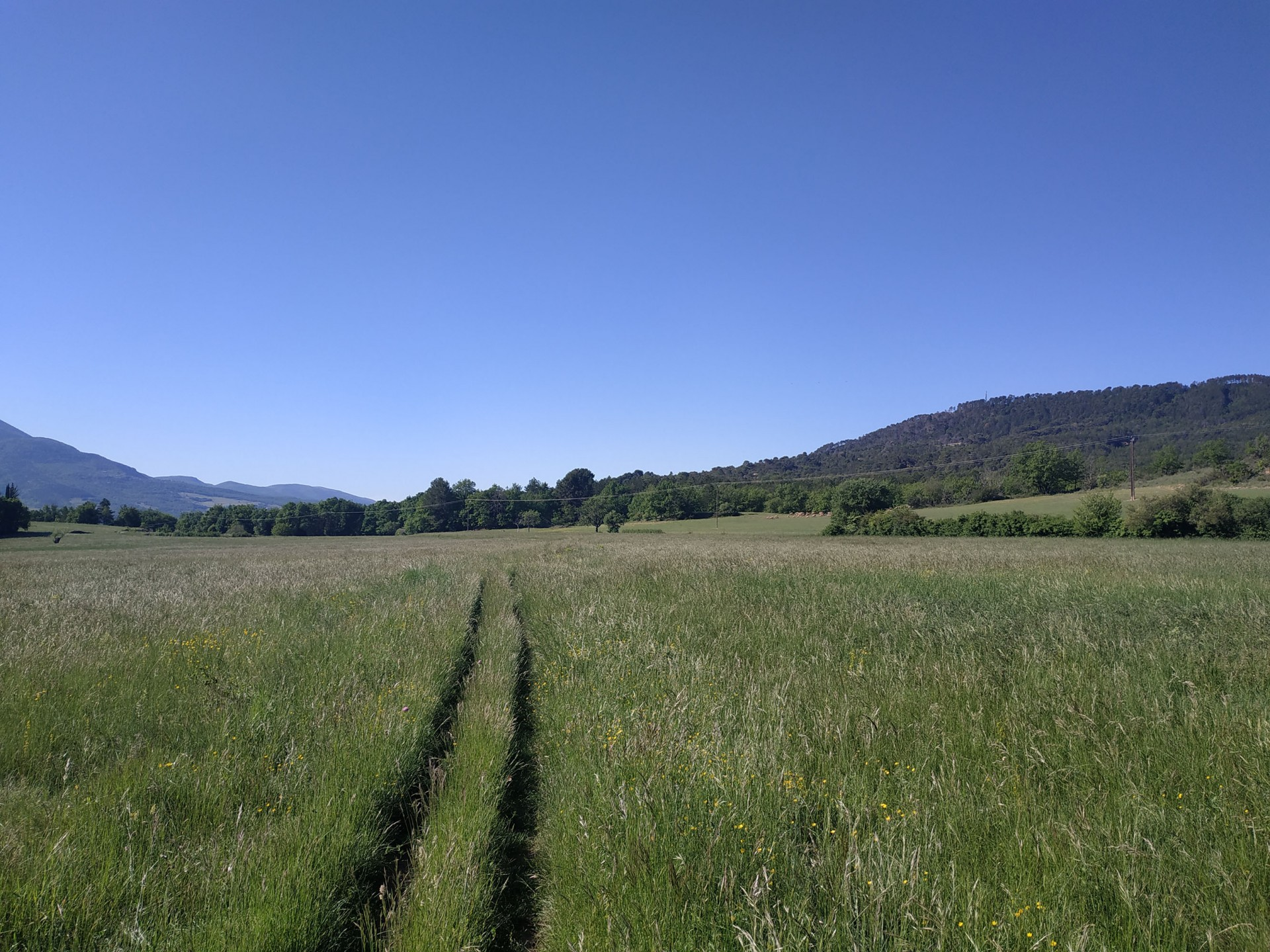 Campagne Peyrengue, Moustiers, Mai